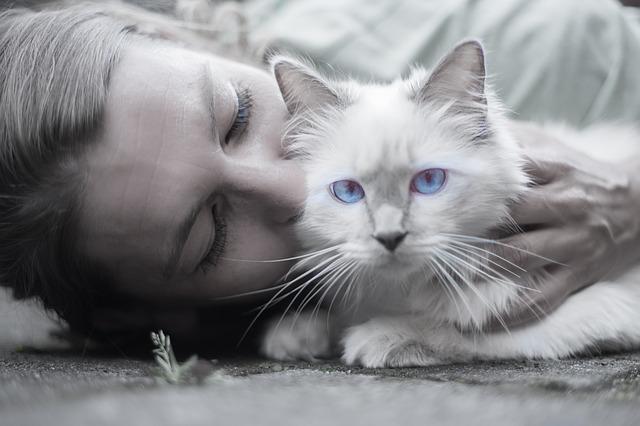 kočka s ženou