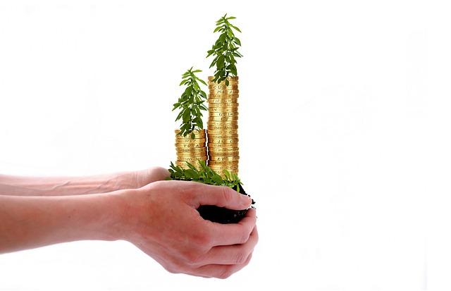 pěstování mincí