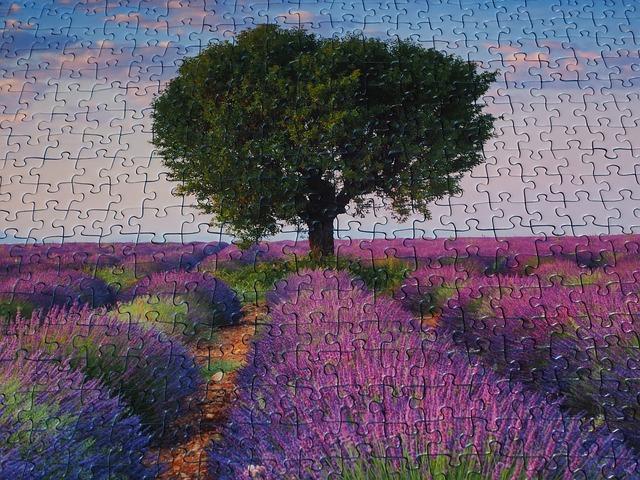příroda z puzzle
