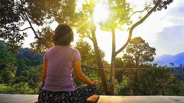 meditace u lesa.jpg