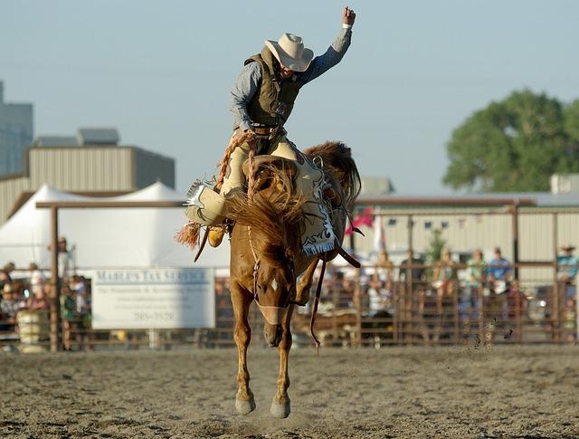 kobvoj při rodeu v Americe